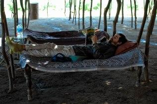 It's a hard life! (Photo: LHorn)